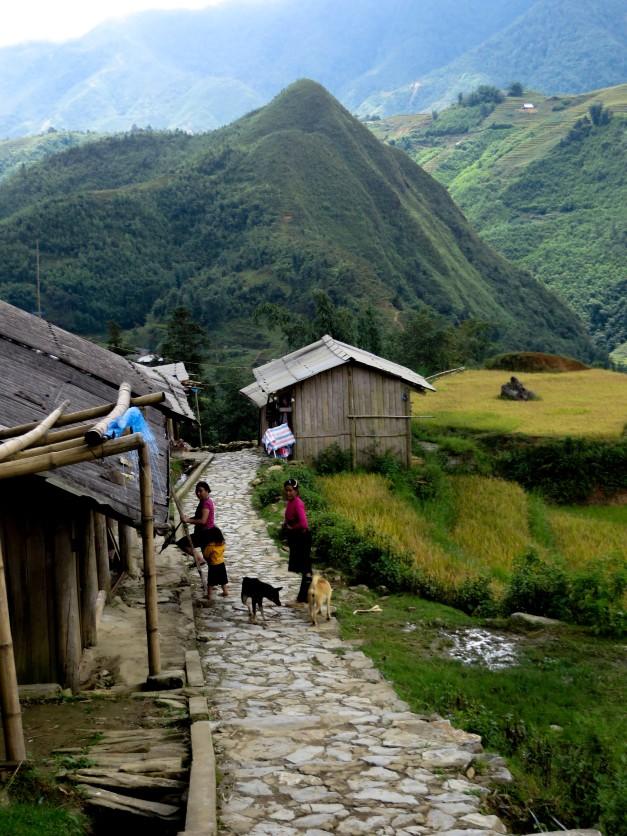 Vietnam-2013-1353