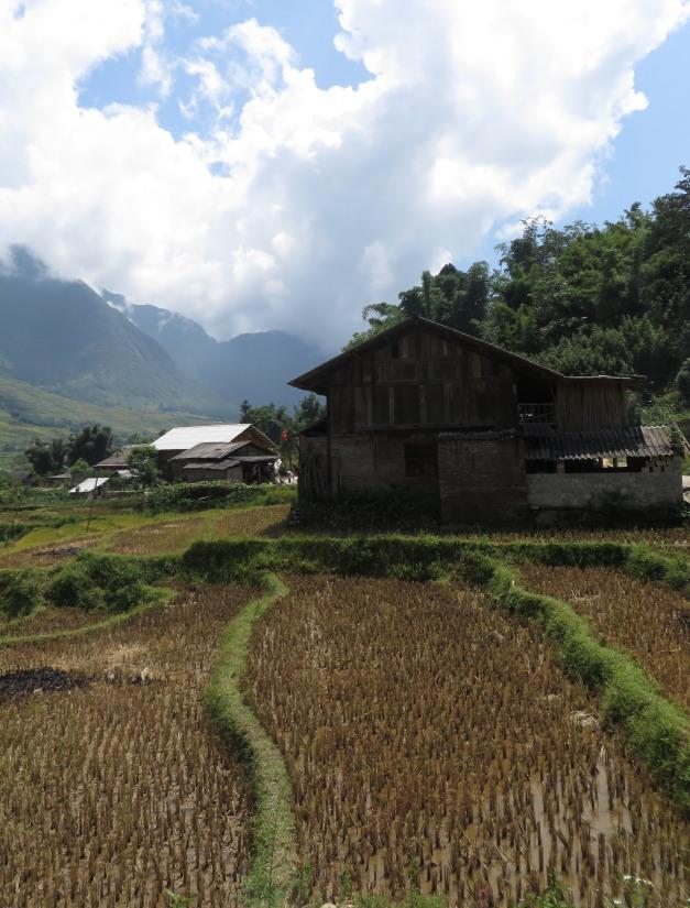 Vietnam-2013-1422